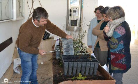 Castelo de Vide plantas2_Resolução_da_Área_de_Trabalho