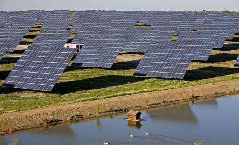 amaraleja_central fotovoltaica 1