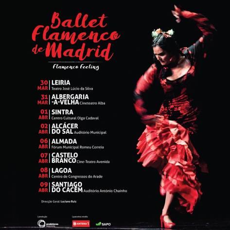 Flamenco 17342887_10154929875335985_6635951673264185971_n