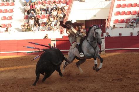 Francisco Cortes_MG_0035
